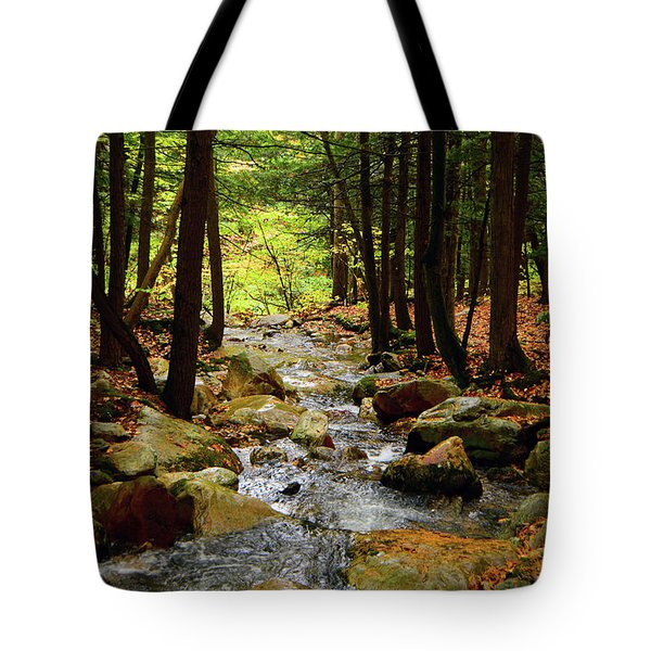 Tote Bag featuring the photograph Stream Rages Vertical Format by Raymond Salani III