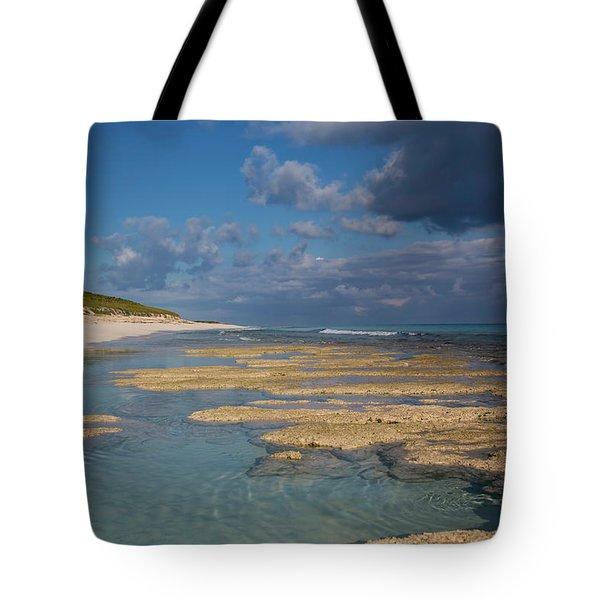 Tote Bag featuring the photograph Stromatolites On Stocking Island by Thomas Kallmeyer