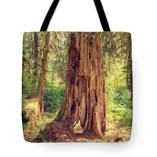 Stump In The Rainforest Tote Bag