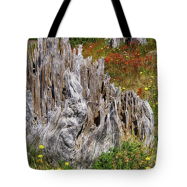 Stumps Of Trees Shattered In The 1980 Eruption Tote Bag