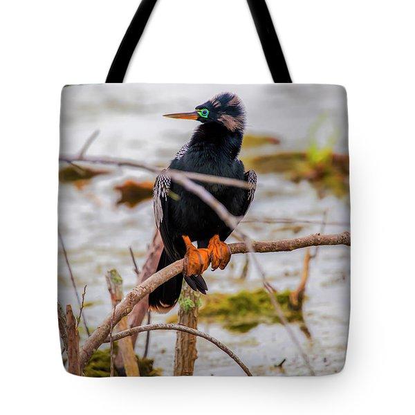 Stunning Anhinga Tote Bag