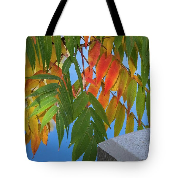 Tote Bag featuring the photograph Sumac by Mark Mille
