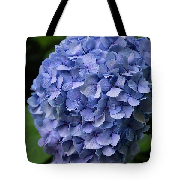 Summer Blues Tote Bag