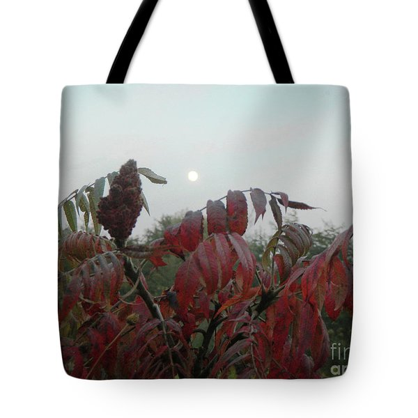 Tote Bag featuring the photograph Summer's End by Rosanne Licciardi