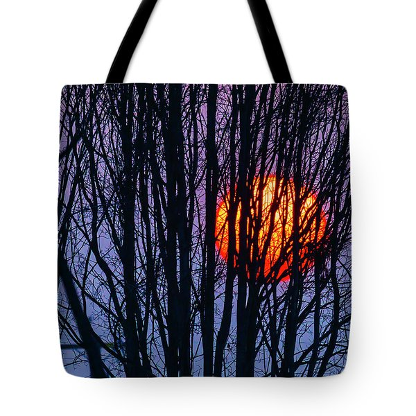 Sun Caught In Tree Branches Tote Bag