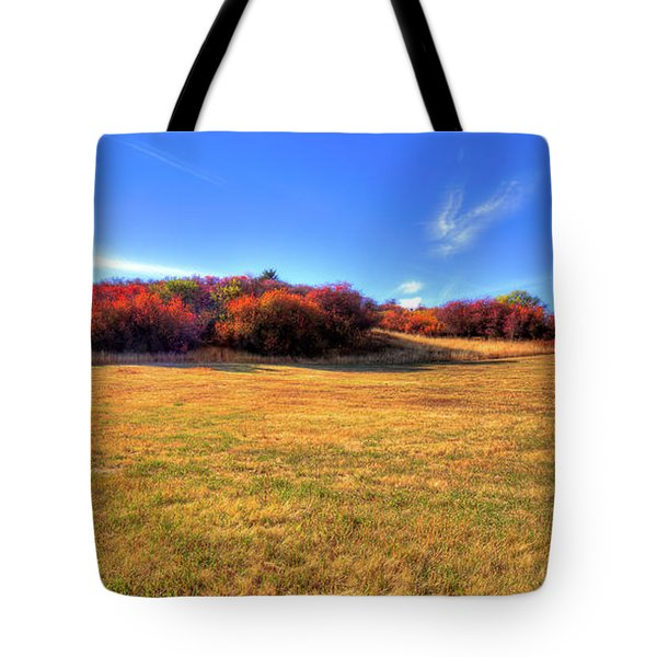 Tote Bag featuring the photograph Sun On Magpie Forest by David Patterson