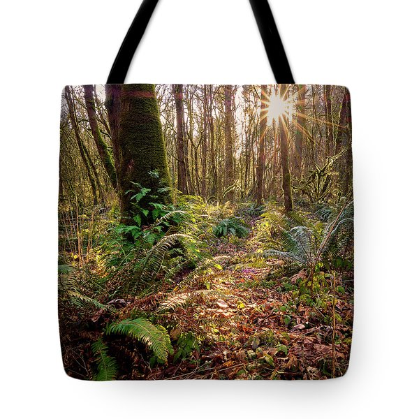Tote Bag featuring the photograph Sun Star In Tryon Creek State Park by Whitney Goodey