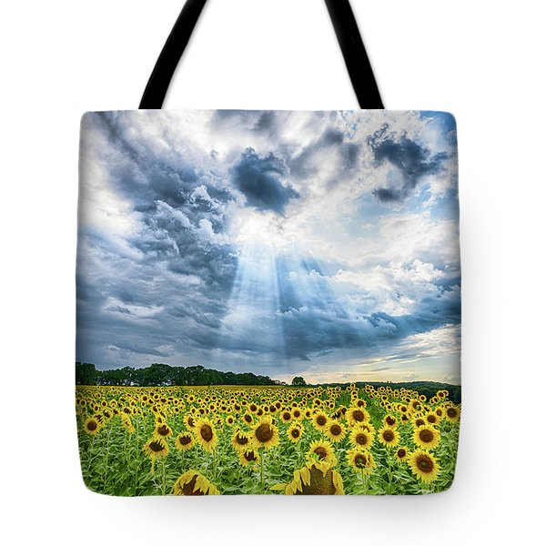 Sunflower Field Tote Bag