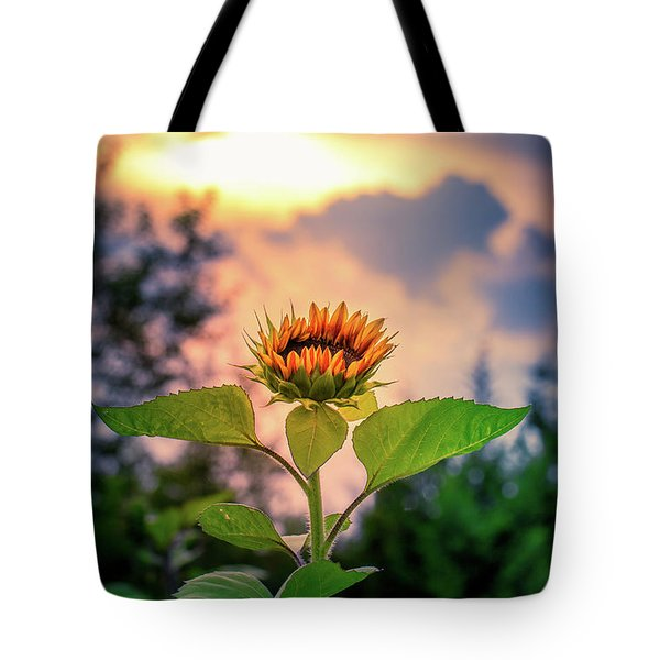Sunflower Opening To The Light Tote Bag