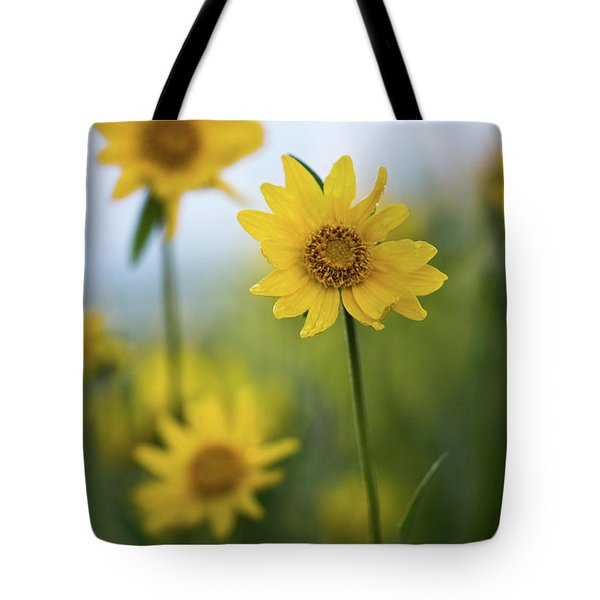 Tote Bag featuring the photograph Sunflower  by Vincent Bonafede
