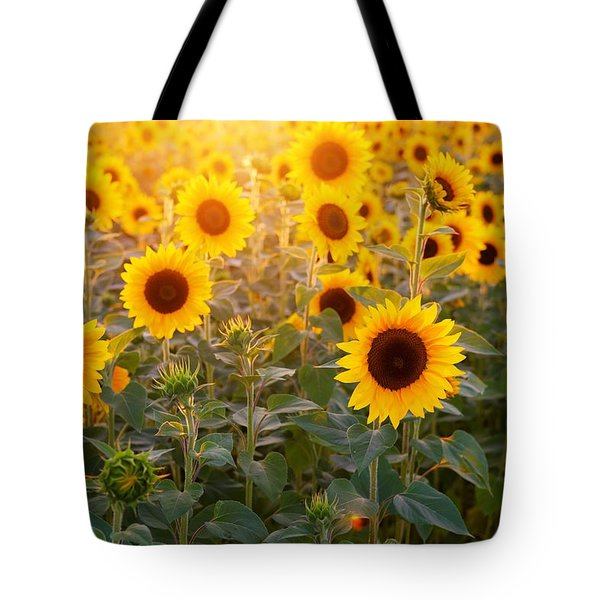 Sunflowers Field Tote Bag
