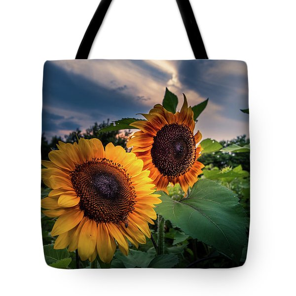 Sunflowers In Evening Tote Bag
