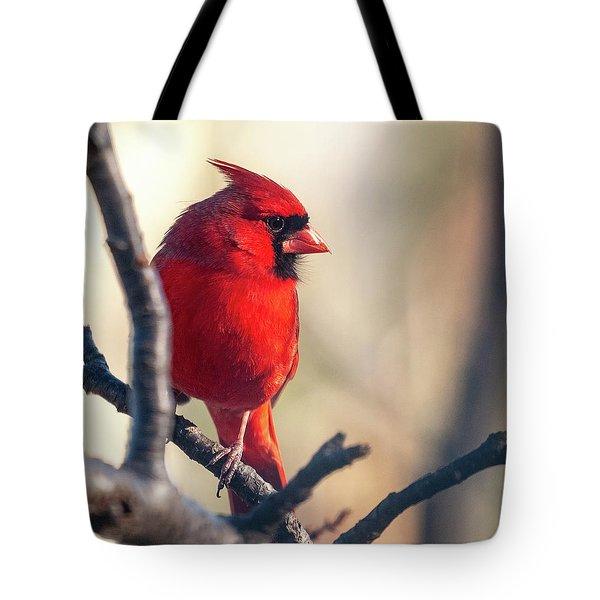 Sunny Cardinal Tote Bag