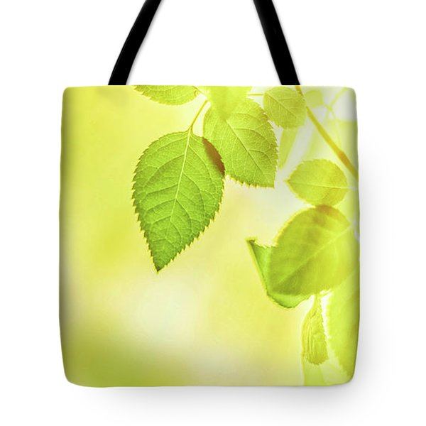 Tote Bag featuring the photograph Sunny Leaves II by Anne Leven