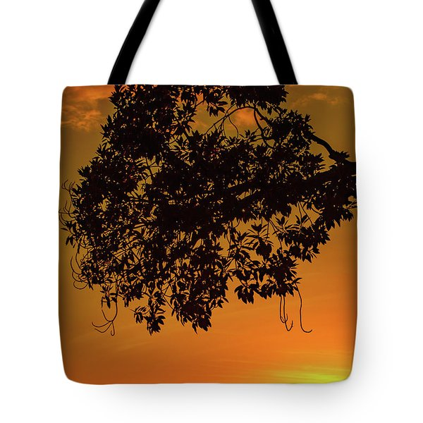 Sunset By The Pier Tote Bag
