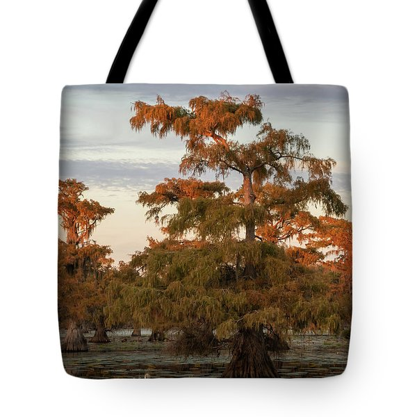 Sunset In The Swamps Of Caddo Lake, Texas Tote Bag