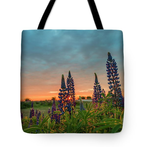 Sunset Over The Field With Blue Flowers Tote Bag