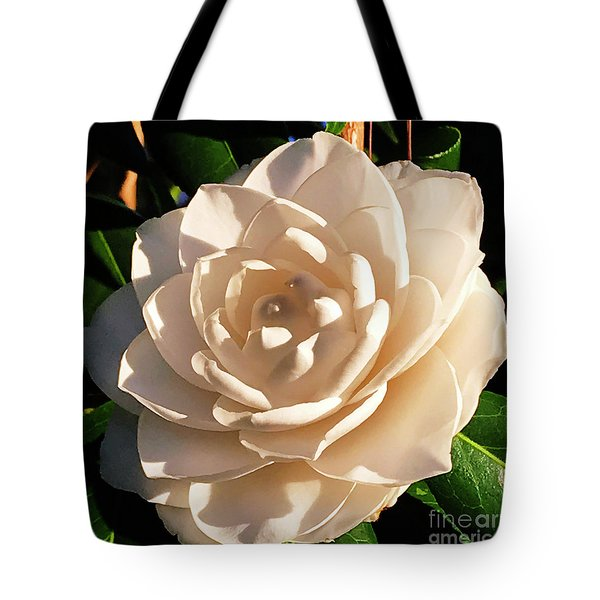 Tote Bag featuring the photograph Sunset Sea Foam by Rick Locke