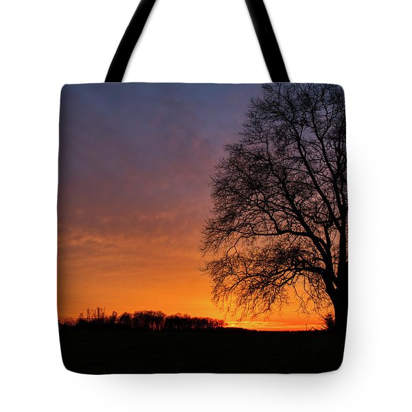 Tote Bag featuring the photograph Sunset Silhouette Tree by Mark Dodd