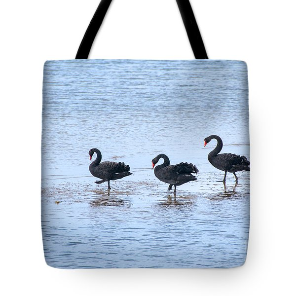 Swans On Parade Tote Bag
