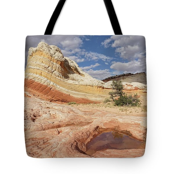 Sweeping Structures In Sandstone Tote Bag