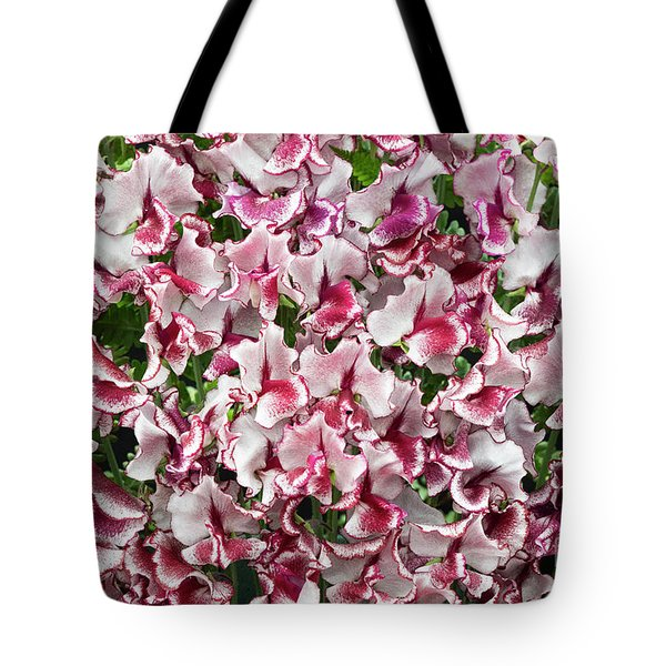Tote Bag featuring the photograph Sweet Pea Lisa Marie Flowers by Tim Gainey