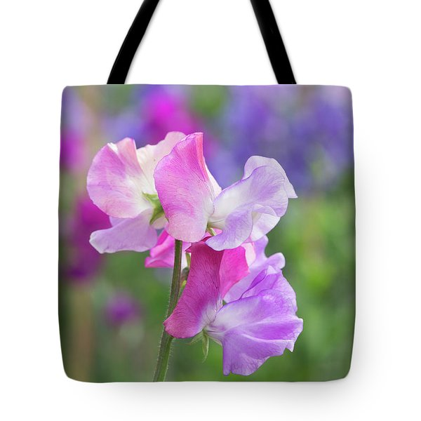 Tote Bag featuring the photograph Sweet Pea Prima Ballerina Flower Portrait by Tim Gainey