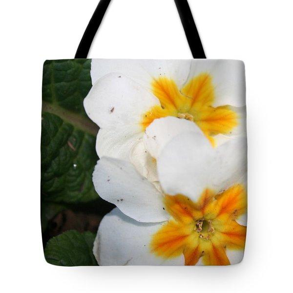 Sweet Primrose Tote Bag