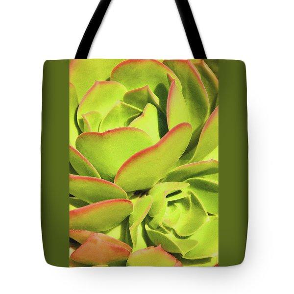 Sweet Succulents I Tote Bag