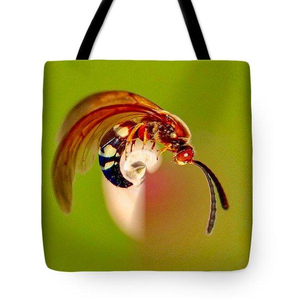 Swirly Wasp Tote Bag