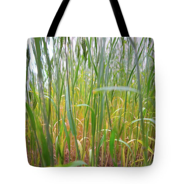 Tote Bag featuring the photograph Tall Grass In Herat by SR Green