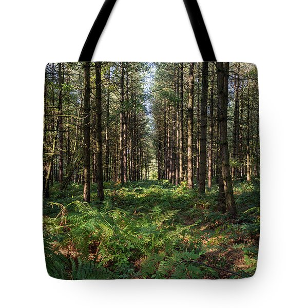 Tall Trees In Sherwood Forest Tote Bag