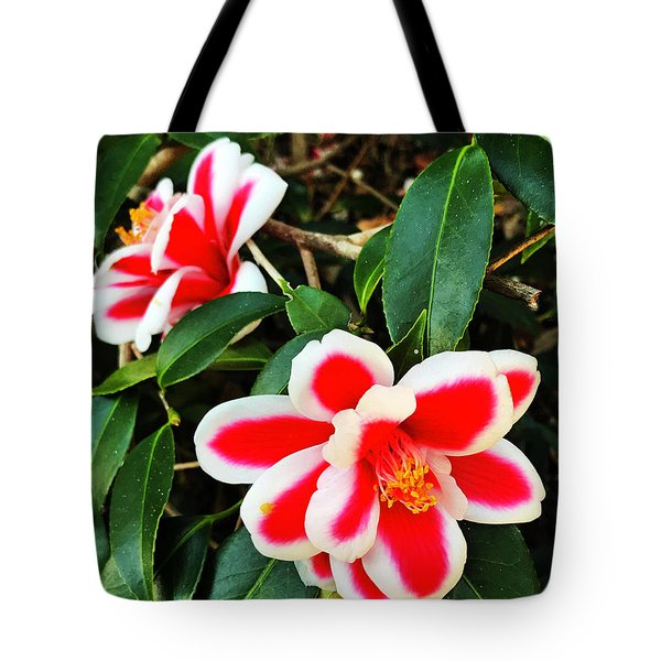 Tote Bag featuring the photograph Tama Peacock Twins by Rick Locke
