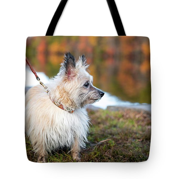 Tote Bag featuring the photograph Tasha 5 by Brian Hale
