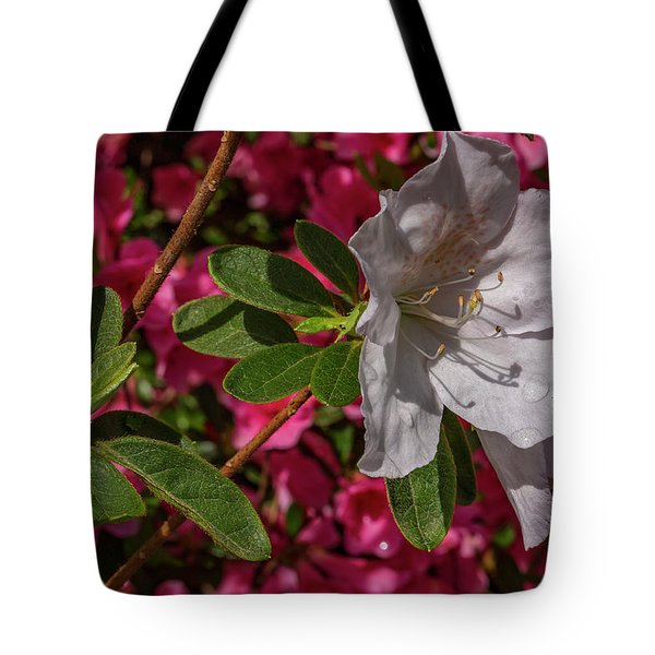 Texture And Contrast Tote Bag