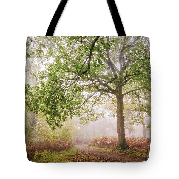 The Autumn Path Tote Bag