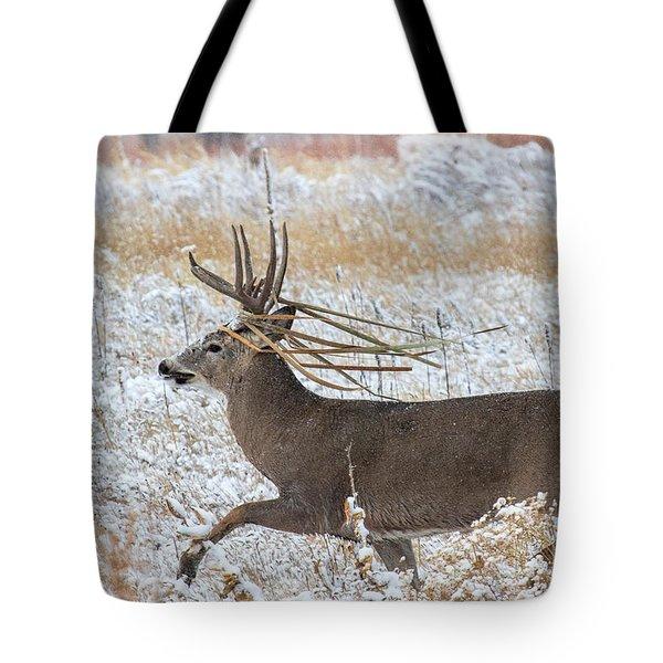 The Basket Weaver Tote Bag