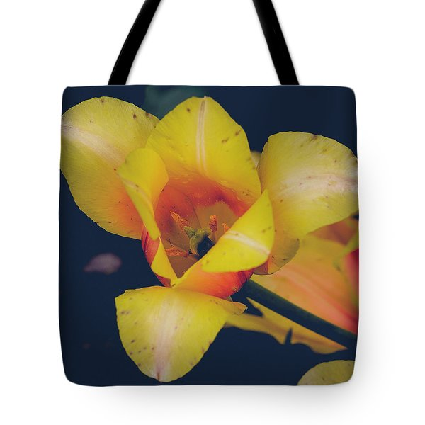 The Bees Knees Tote Bag
