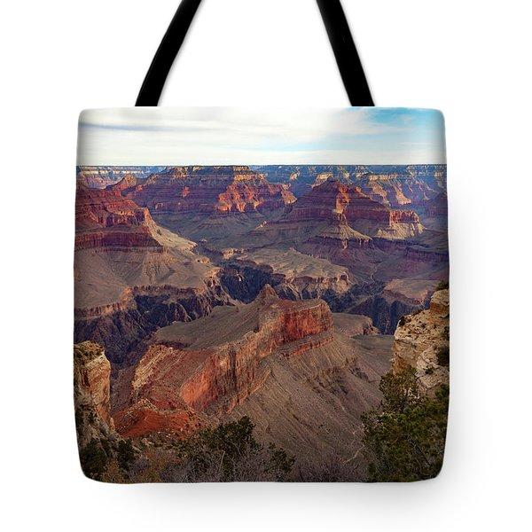 The Canyon Awakens Tote Bag