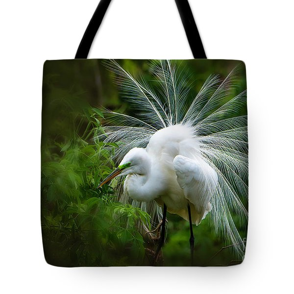 The Display Tote Bag