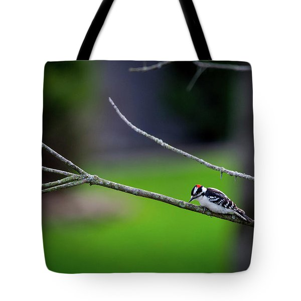 The Downey Woodpecker Tote Bag