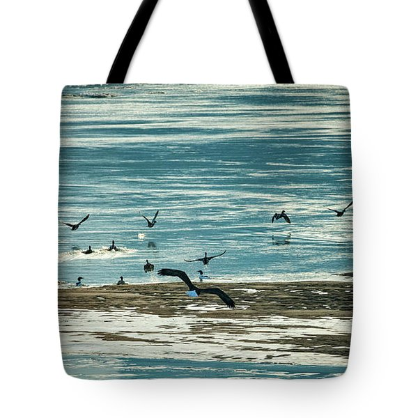 Tote Bag featuring the photograph The Eagles Are Coming by Jeff Phillippi