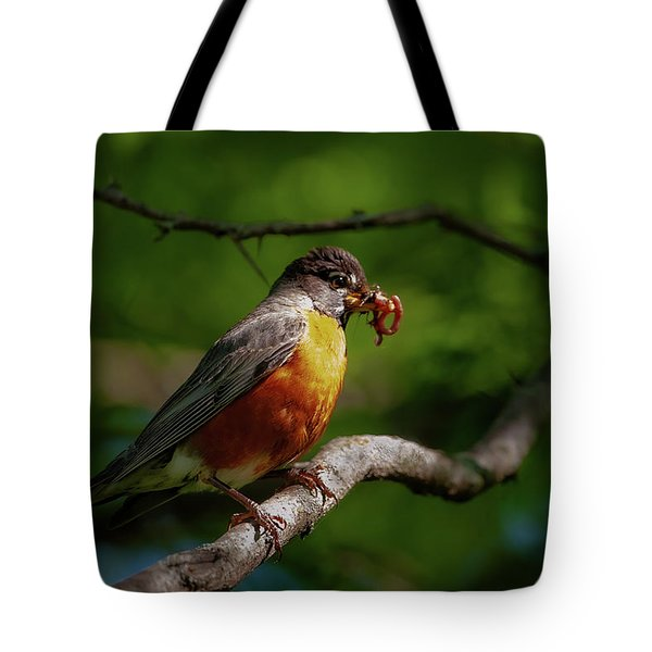 Tote Bag featuring the photograph The Early Bird by Jeff Phillippi