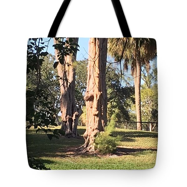 The Face In The Tree Tote Bag