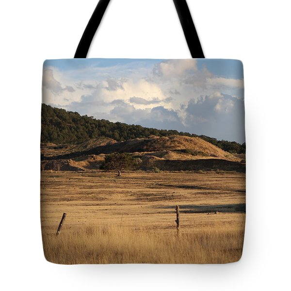 The Golden Hour In Utah Tote Bag