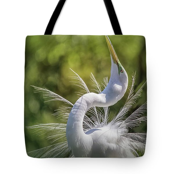 The Great White Egret Mating Dance Tote Bag