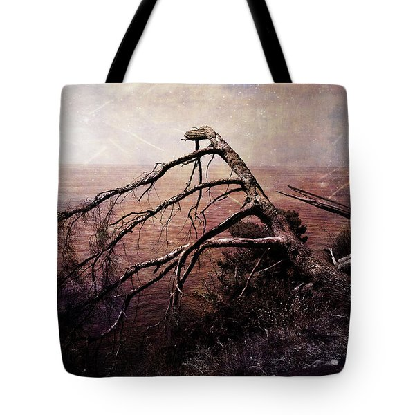 Tote Bag featuring the photograph The Invisible Force by Randi Grace Nilsberg