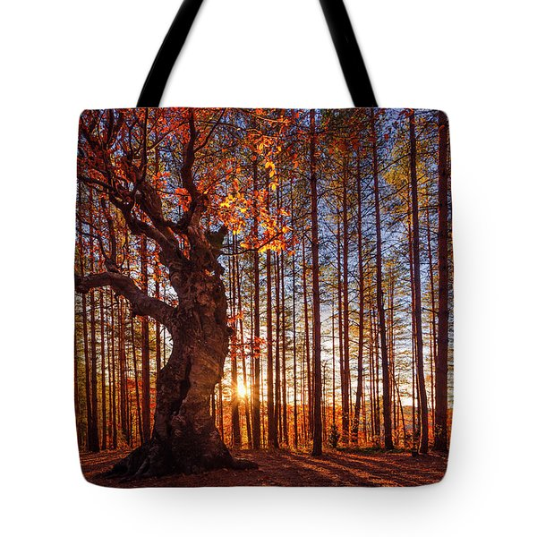 The King Of The Trees Tote Bag