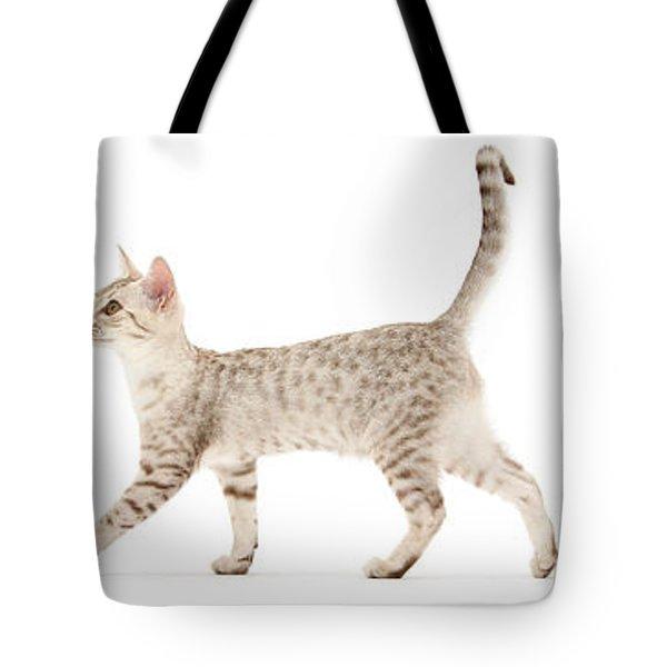 The Kits Parade - Three Tote Bag