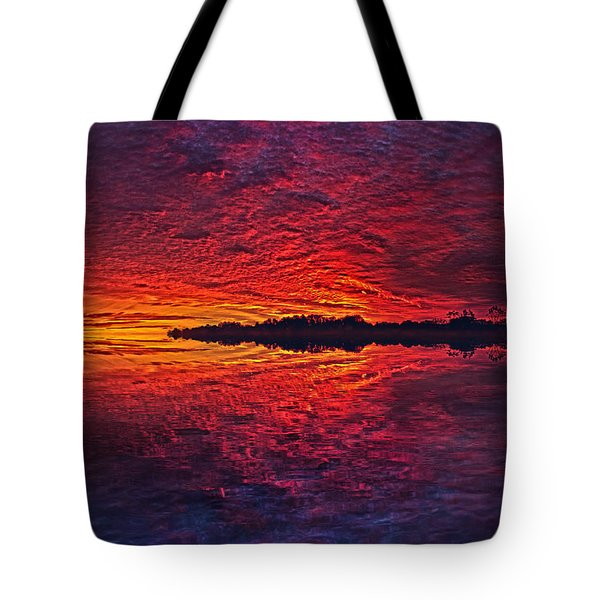 Tote Bag featuring the photograph The Last Chapter by Phil Koch